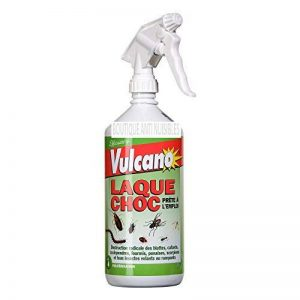 PRODUIT INSECTICIDE LAQUE CHOC BLATTE CAFARDS PUCE FOURMIS ARRAIGNEES TOUS INSECTES 1L de la marque Vulcano image 0 produit