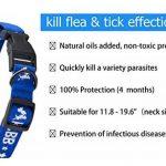 Puces et les tiques Collar pour toutes sortes de chiens et chats Amitraz et naturel Medicinal Botanical Préparatifs (protection des animaux de compagnie à l'abri des ravageurs mord infestations larves de moustiques poux) (Bleu(Chien), Medium/Small) de la image 2 produit