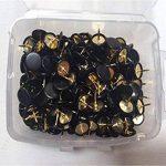 punaise noire TOP 9 image 1 produit