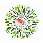 Puressentiel Traitement anti-poux Lotion et peigne 100ml de la marque Puressentiel image 4 produit