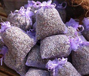 Quertee® Lot de 10sachets de lavande parfumée bio 100g lavande fleurs de la marque Quertee® image 0 produit