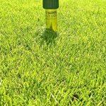 repousser fourmis maison TOP 1 image 2 produit