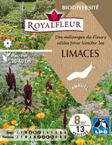 Royalfleur PFRE08822 Graines de Fleur Utiles pour Repousser les Limaces 8 m² de la marque Royalfleur image 0 produit