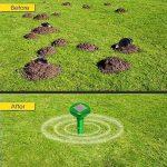 répulsif naturel fourmi TOP 7 image 3 produit