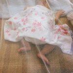 Sekey Moustiquaire pour Lits Simples à Doubles | Protection de d'insecte | Écran de Protection Anti-Insectes | Système d'installation Rapide et Facile de la marque Sekey image 4 produit