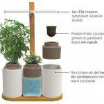 Smart Lilo, le potager d'intérieur autonome Prêt à Pousser - Cultivez toute l'année simplement - inclus basilic, menthe et ciboulette de la marque Prêt à Pousser image 1 produit
