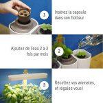 Smart Lilo, le potager d'intérieur autonome Prêt à Pousser - Cultivez toute l'année simplement - inclus basilic, menthe et ciboulette de la marque Prêt à Pousser image 4 produit