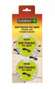 Solabiol SOFOGEL20 Anti-Fourmis Boites 2x10G, Jaune de la marque Solabiol image 0 produit