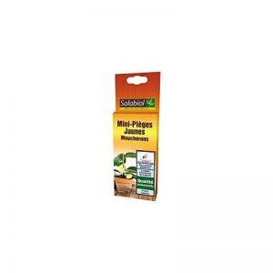 Solabiol Sopiflor Mini-Pièges Moucherons Discret pour Plantes D'Intérieur, Jaune, 8 x 2 x 23 cm de la marque Solabiol image 0 produit
