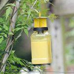 The Buzz STV336 Set de 2 Attrape-Mouches, Transparent, 15.5 x 7.6 x 23.5 cm de la marque The Buzz image 1 produit