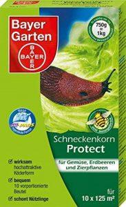 traitement anti limace TOP 1 image 0 produit