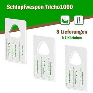 Trichogrammes contre mites alimentaires 3 livraisons de 1 carte (1000 oeufs) de la marque Der Motten-Shop image 0 produit