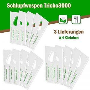 Trichogrammes contre mites alimentaires 3 livraisons de 4 cartes (3000 œufs) de la marque AMW Nützlinge image 0 produit