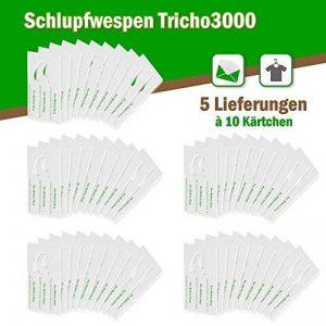 Trichogrammes contre mites textiles 6 livraisons pack de 10 cartes (3000œufs) de la marque AMW Nützlinge image 0 produit