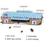 tuer dés fourmis dans le jardin TOP 12 image 1 produit