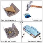 tuer dés fourmis dans le jardin TOP 12 image 2 produit