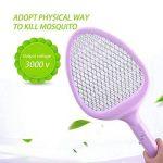 tuer les mouches dans une maison TOP 2 image 2 produit