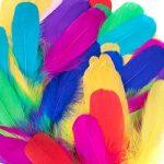Vidillo Plumes Colorées, 150pcs Naturel Plume Décoration, Idéal Pour Costumes, Chapeaux, Décoration d'intérieur Fete Mariage Anniversaire, Multicolore(Mouche) de la marque Vidillo image 4 produit