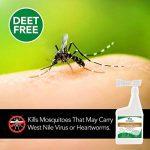 vétérinaire de Meilleur Naturel puces et tiques Yard & Kennel Spray, 907,2gram, fabriquée aux États-Unis de la marque Vets Best image 3 produit