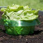 Windhager anneau anti-limaces, anti-limaces, 6pièces–diamètre: 23cm–vert–pour la défense contre les limaces–protège les plantes contre les animaux de la marque Windhager image 2 produit