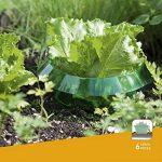Windhager anneau anti-limaces, anti-limaces, 6pièces–diamètre: 23cm–vert–pour la défense contre les limaces–protège les plantes contre les animaux de la marque Windhager image 1 produit